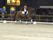 DVB Foundation Indoor Brabant