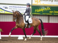 Horsefood competition 2015